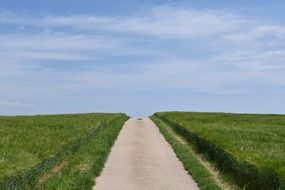 Road between two fields