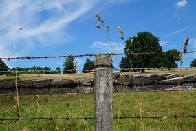 fence with barbed wire on a green meadow