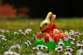 Easter chocolate bunny in the spring meadow