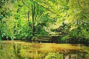 pier with steps on bank of River with calm green water in forest at summer