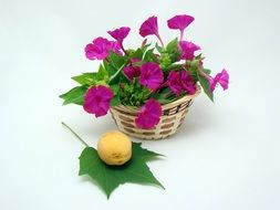 Flowers Basket Green Yellow