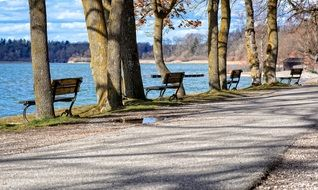 bench in the park by a lake