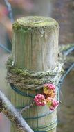 flowers are tied to a wooden pillar