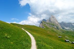 path in green field Mountains South Tyrol Dolomites