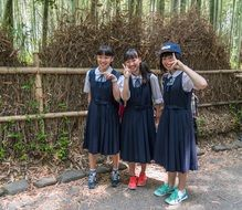 three japanese female students near a bamboo forest in a park