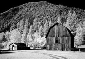 wooden shed at the foot of a mountain in montana in monochrome image