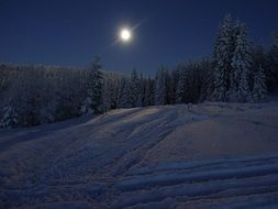 full moon over winter forest
