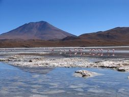 panoramic view of a lake in bolivia
