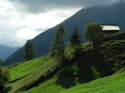 mountain hut on a green hill in Switzerland