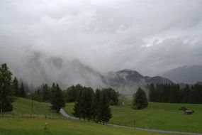 panorama of a mountain meadow in a foggy haze