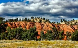 Colorado Hills and Meadow colorful landscape