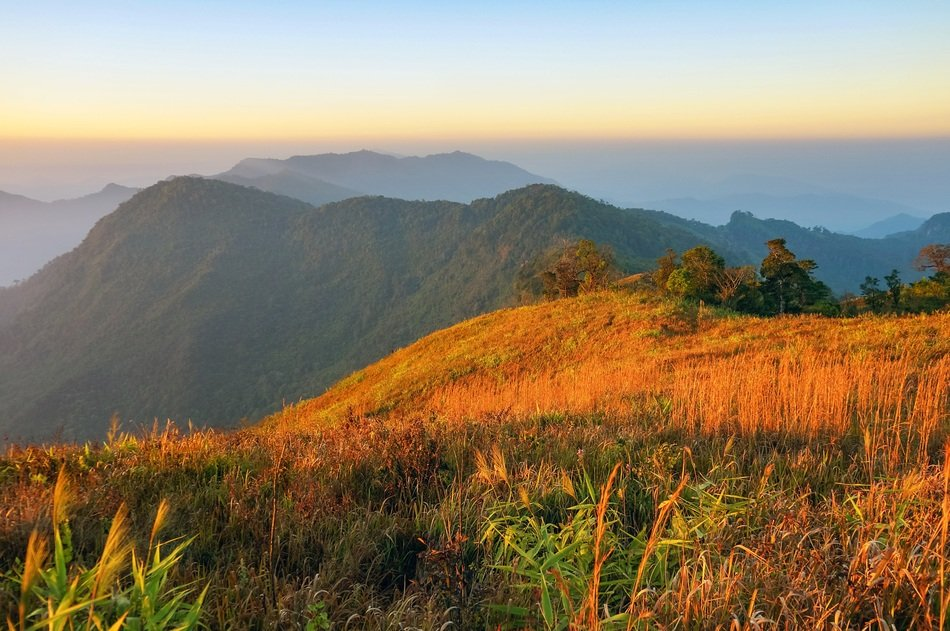 panorama of nature and mountains in Phuchifa nature reserve in Thailand