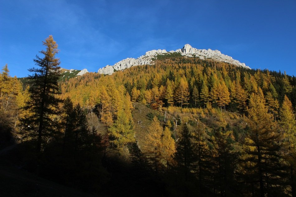 golden autumn in the mountains