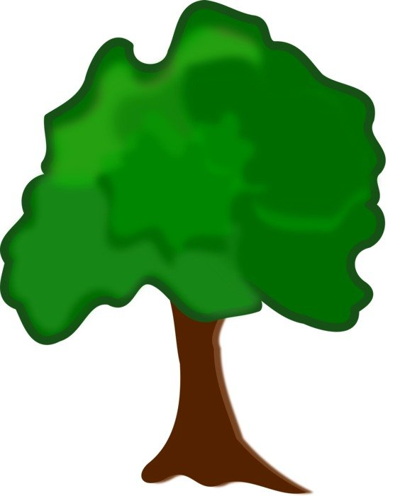 draw tree with green foliage
