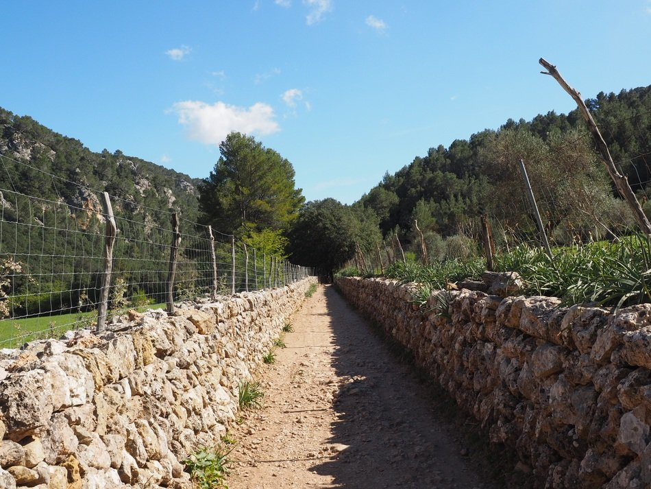Stone wall in Mallorca