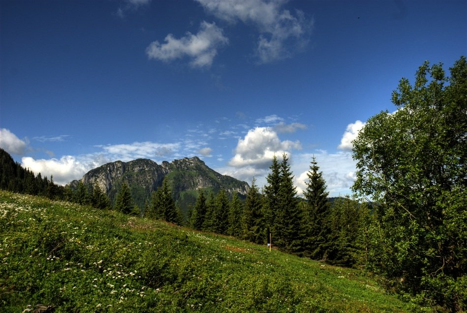 Tatry Poland Czerwone Wierchy green field landscape