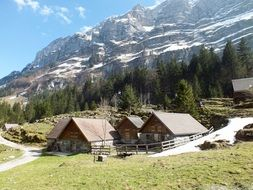 wooden mountain huts at the foot of the alps