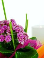 potted flowers for table decoration