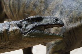 large reptile of prehistoric times close-up
