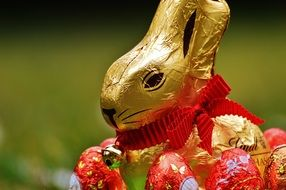 golden chocolate bunny on a green meadow