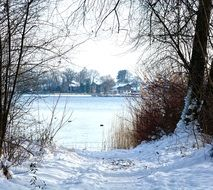 Winter landscape with Snowy Trees at Lake