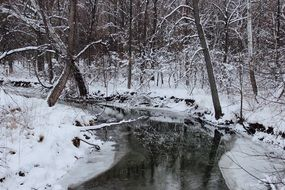 river among winter forest