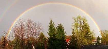 full rainbow over the forest