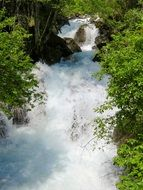 Nature Water flow Wild River view