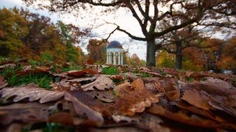 Autumn Wiesbaden romantic scene