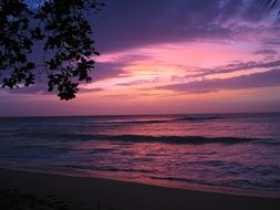 pink sunset over barbados