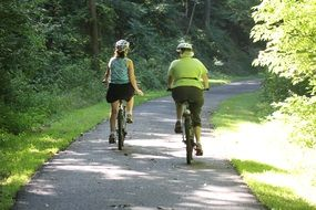 cyclists on a wide trail in a sunny park