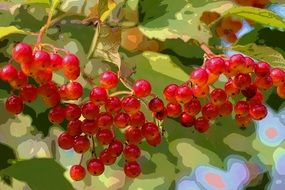 pleasant Berries Autumn