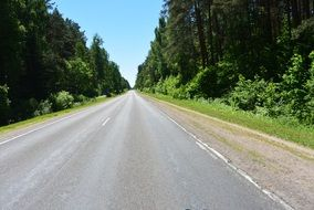 smooth asphalt road through the forest on a sunny day