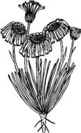 black and white graphic representation of a bush of wildflowers
