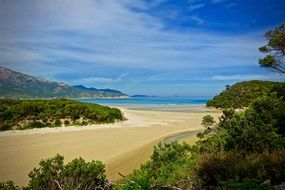 panorama of a tidal river at wilsons promontory