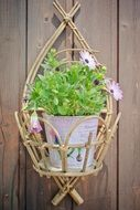 Flowerpot with Purple Daisies