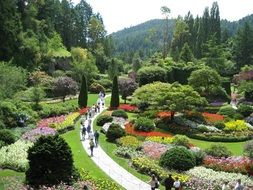 colourful Butchart Gardens with Flower beds