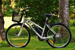 bike with basket on green grass in the park