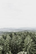 panorama of the bavarian forest among the hills