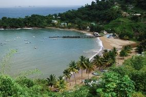 panorama of a beach on the island of tobago