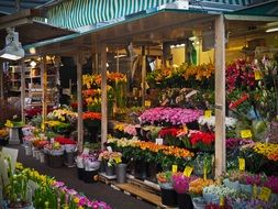 market stall with flowers