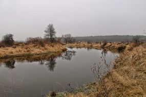quiet river among dry grass on a cloudy day