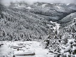 mountain panoramic winter landscape