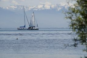 distant view of sailboats on Lake Constance