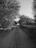 road in the countryside in black and white image