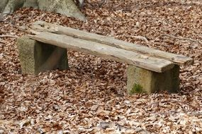 bench among brown autumn foliage in the forest