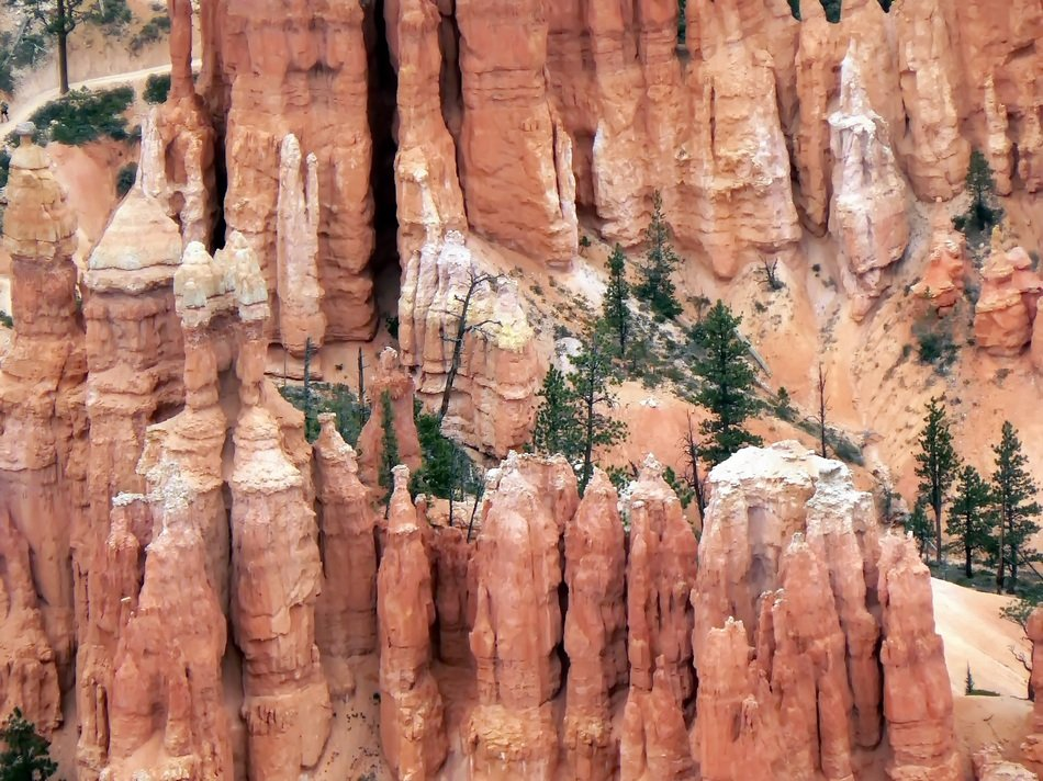 cliff with green trees in the desert
