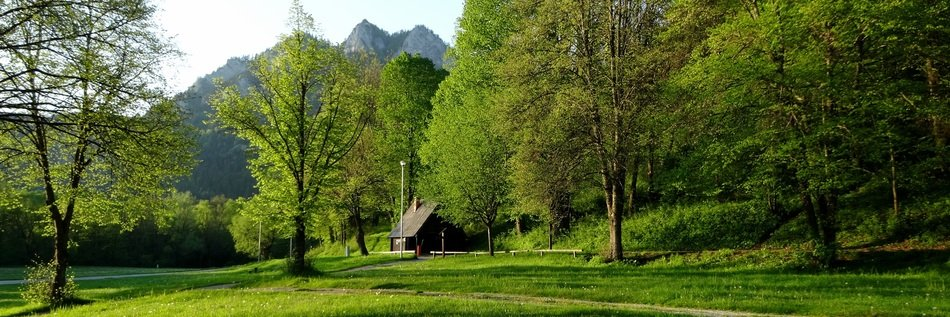 Landscape of green nature in Poland