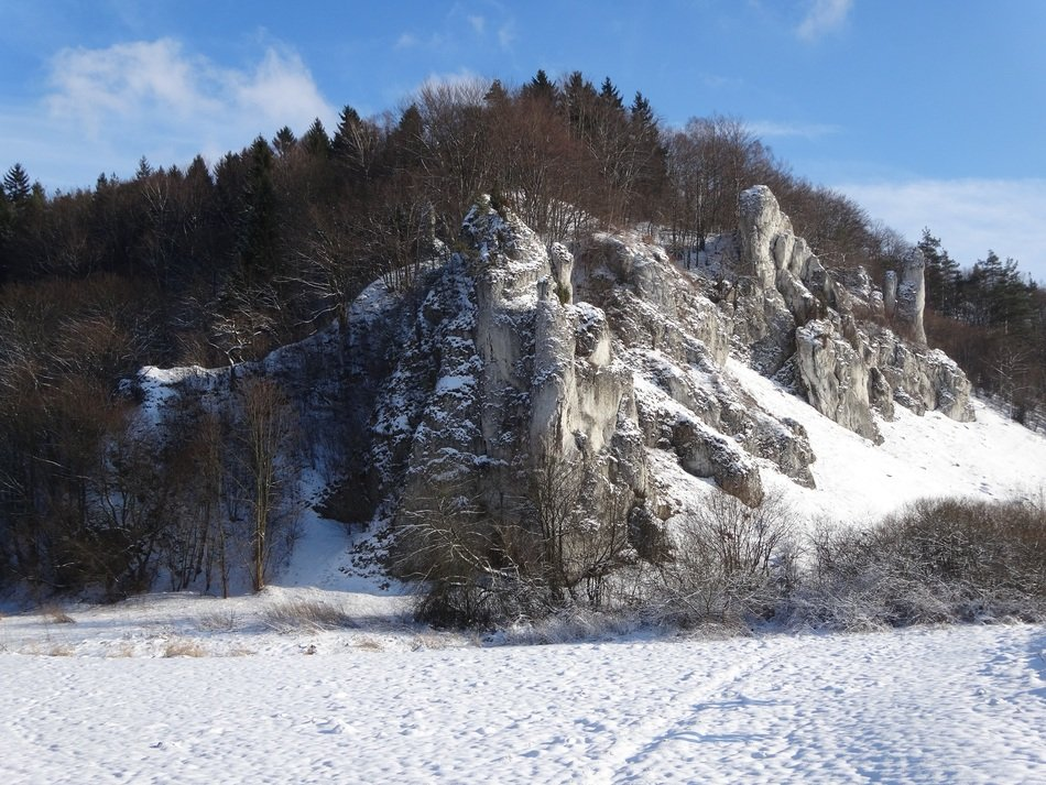 Landscape of winter national park in Poland