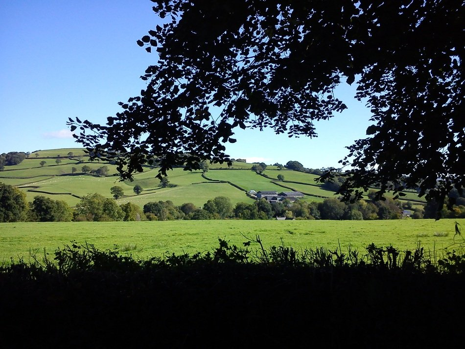 awesome Devon Country Side